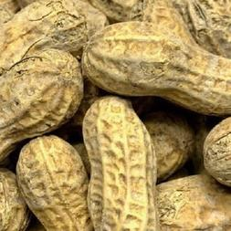 bulk roasted salted in shell peanuts select