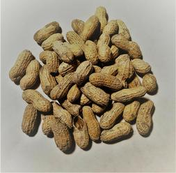 Bulk Roasted UNSALTED In-Shell Peanuts, Party Snack
