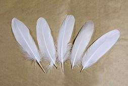 Goose feather,Hgshow 100Pcs beautiful feathers 6-8 inches 15