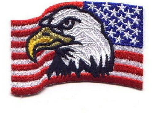 """3 Pcs Eagle in American USA Flag Embroidered Patches 3.5""""x2."""