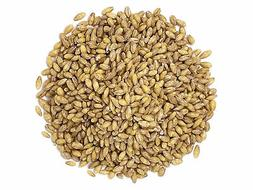 Organic Hulled Barley by Food to Live