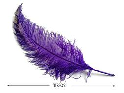 """10 Pieces - 20-28"""" Purple Ostrich Spads Large Wing Feathers"""