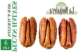 Raw Shelled Natural Pecan Nut Halves in Bulk and Vacuum seal